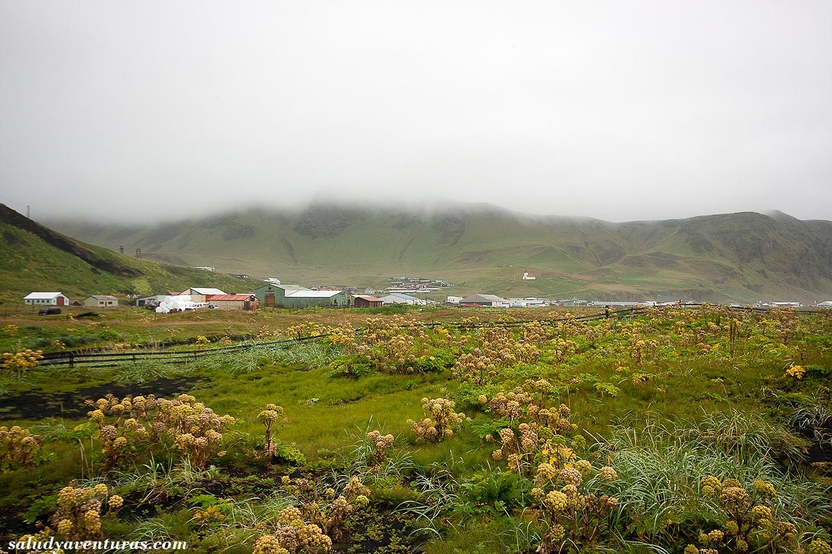 islandia21