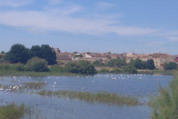 16 de julio de 2020 Llegada a Albacete